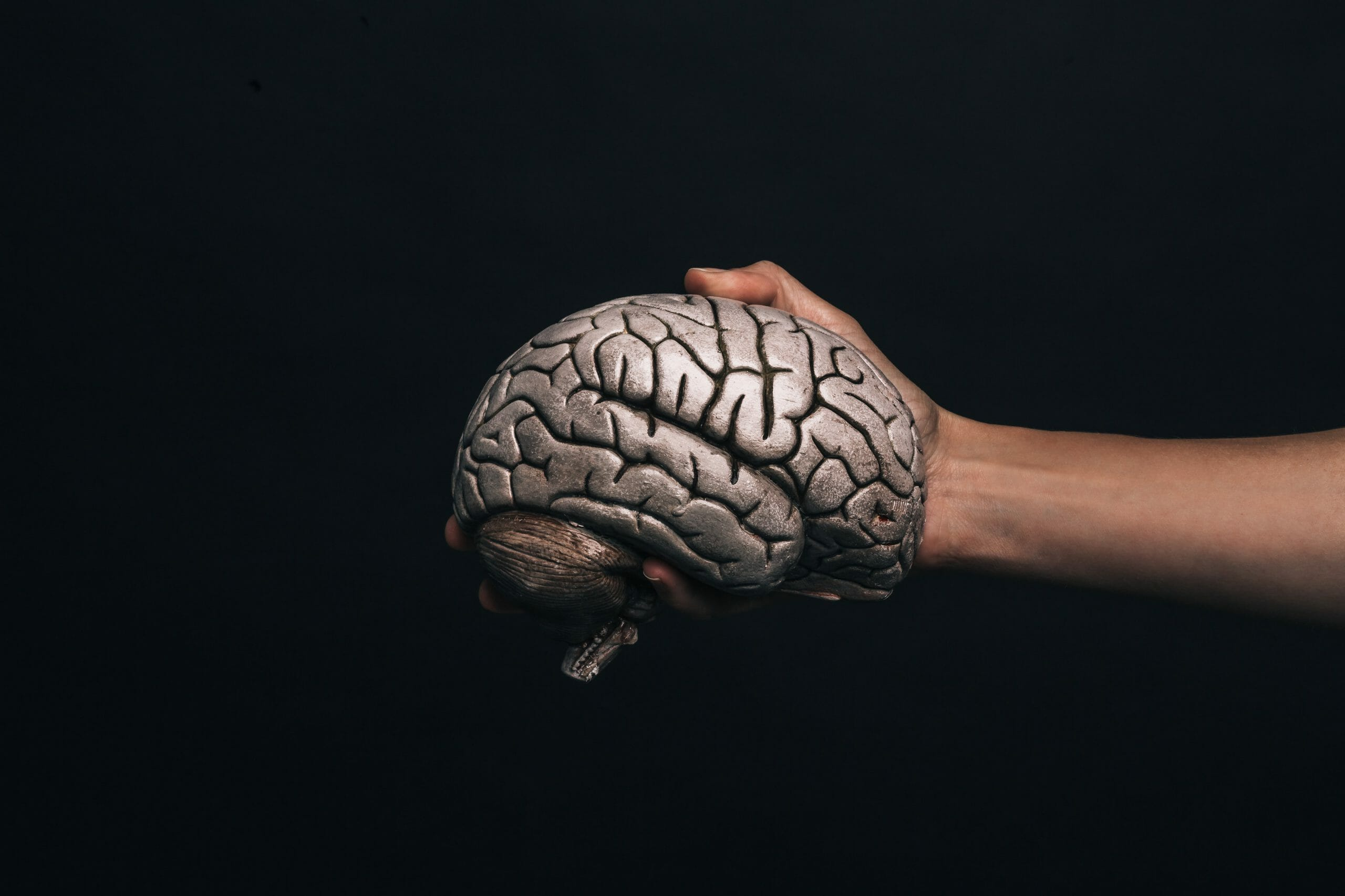 Hand Holds Model Brain Min Scaled